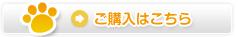 ペット用カベ紙保護シート(半ツヤ)